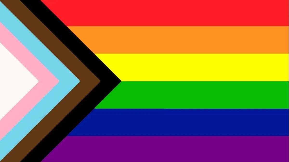 Regenbogenflagge mit weiß, rosa, blau, braun und schwarzen Streifen